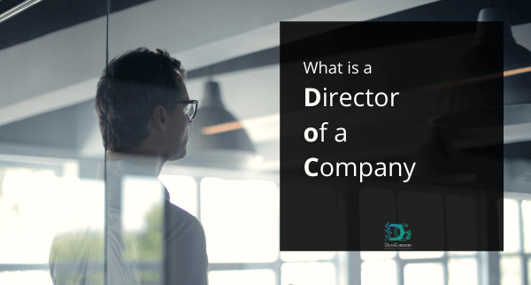 what is a director of a company