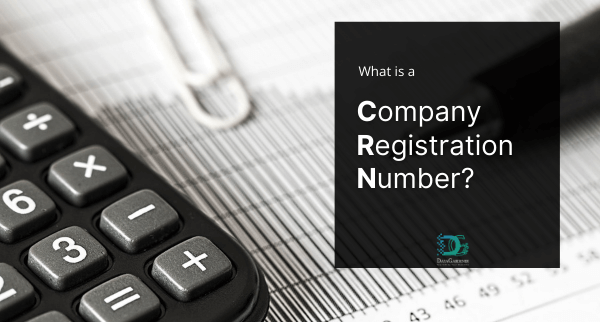 What is a Company Registration Number?