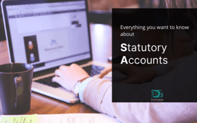 Everything you want to know about Statutory Accounts
