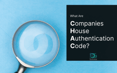 What is Companies House Authentication Code?
