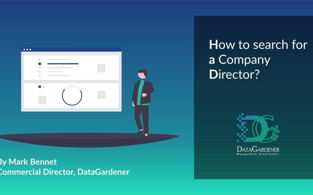 How to search for a Company Director?
