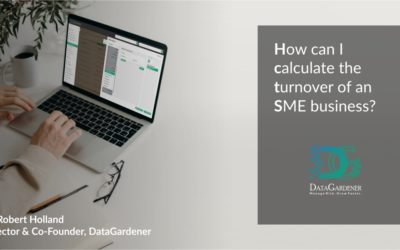 How can I calculate the turnover of an SME business?